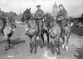 231st on parade [officers mounted on horseback]