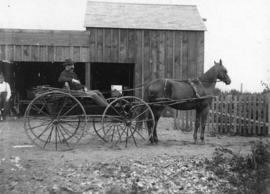 [J.G. Woods in a horse-drawn buggy in front of stable at Leamy and Kyle Sawmill]