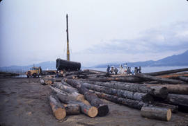 Logs for Lumberman's Arch - 2 [4 of 18]