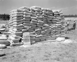 [Bags of Flame-Out fire retardant stacked at the Cranbrook Airport]