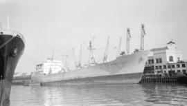 "M.S. Parrakoola [at dock, at Pier ""B""]"