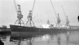 S.S. Evagelistria [at dock]