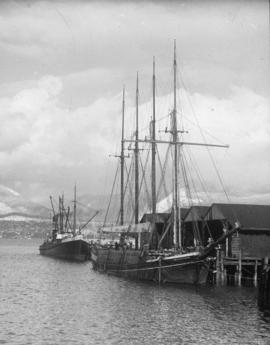 "[The ""Philippine"" and another ship at dock]"