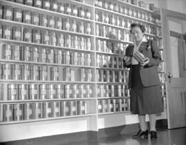 Mrs. Lillico [beside shelves of tea at] Empire Tea Bureau