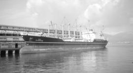 M.S. Jalamohan [at dock]