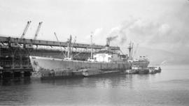 S.S. Pegasus [at dock, with lumber-filled barges alongside]