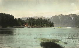 [View of] Snug Cove