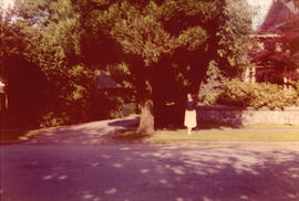[Irene Maccaud Nelson beside road in front of 3690 Selkirk Street]