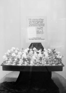 B.C.E.R. Co. Display - flower window
