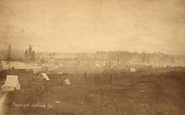 [View of Vancouver before the fire from a clearing at Hastings Street and Granville Street ]
