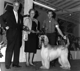 Judge and unidentified woman presenting Best Hound in Group [Afghan Hound] award at 1964 P.N.E. A...