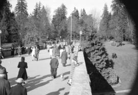 [People strolling along the Stanley Park causeway near the park entrance]