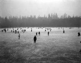 [People skating on Lost Lagoon]