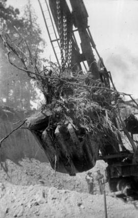Filling the trestle at Mile 2.2 K.V.R. : A root being placed to one side