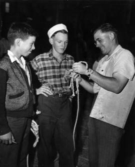 Arthur Maddocks - Richmond demonstrates halter making to two boys at P.N.E.