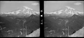 Mount Rainier from Ricksecker Point