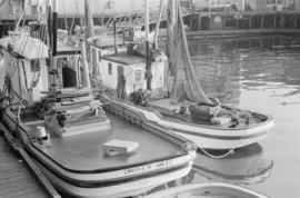 [Fish boats at dock]
