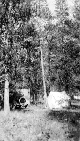Automobile and tent in treed area