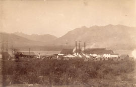 [View of Hastings Sawmill from Powell Street and Jackson Avenue]