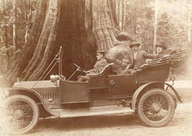 [L.D. Taylor in car with driver and another man in front of hollow tree in Stanley Park]