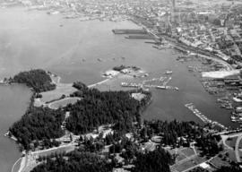 Stanley Park from the air