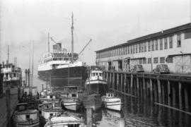 "[Union S.S. ""Catala"" and other boats at dock]"