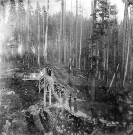 [View of people on the suspension bridge over Lynn Creek Canyon]