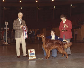 Best in Show award being presented at 1974 P.N.E. All-Breed Dog Show [Irish Setter]