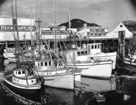 Fishing boats at Prince Rupert [docks]