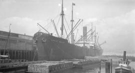 S.S. Robert Dollar [at dock]