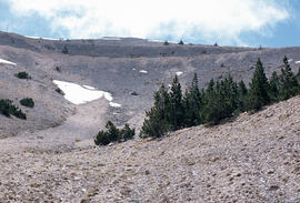 Mt. Ventoux, view from summit