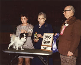 Best in Group [Toy Group: Papillon] award being presented at 1976 P.N.E. All-Breed Dog Show