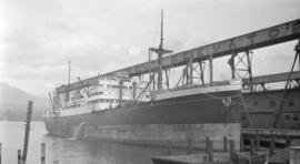 M.S. Dinteldyk [at Canadian Government elevator dock]
