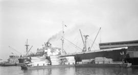 S.S. Suerte [at dock, with lumber-filled barges]