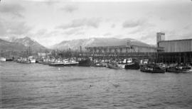 Fishboats at VHC [Vancouver Harbour Commission] Wharf