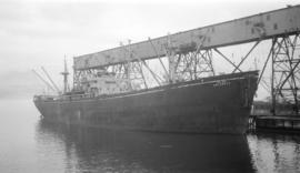 S.S. Jalaketu [at dock]