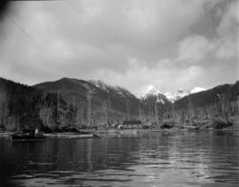 [View from the water of logging site on the Queen Charlotte Islands]