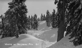 Winter on Hollyburn Mtn. - B.C.