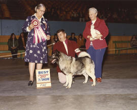 Best Canadian Bred in Show award being presented at 1975 P.N.E. All-Breed Dog Show [Norwegian Elk...