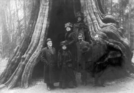 [John F. McRae and others in front of the Hollow Tree]