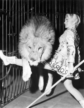 Eloise Berchtold wild animals : [circus performer and lion in circus act]