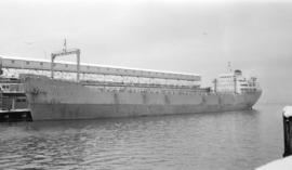 M.S. Carlton [at dock]