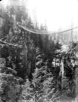 [Suspension bridge across Lynn Canyon]