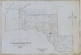 Topographical map of T.L.44990 (T.L.12890) - Nelson Island, New Westminster District, B.C.