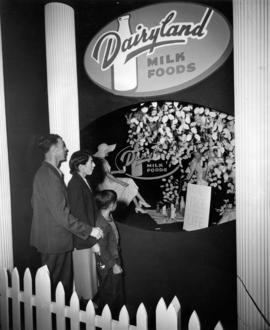 Dairyland milk foods display