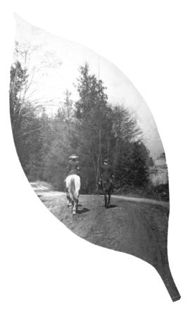 [Man and woman on horseback at Stanley Park trail]