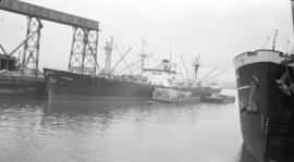S.S. Triton [at dock, with lumber-filled barges alongside]