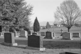 Mountain View Cemetery - old section, north end