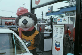 Tillicum interacting with driver at Tremblay and Sons Chevron Station on 4th Avenue and Macdonald...