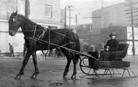 Walter Snell in horse drawn sled
